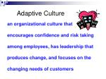 adaptive culture