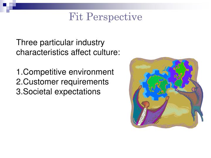 Fit Perspective