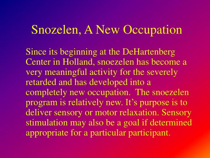 Snozelen, A New Occupation