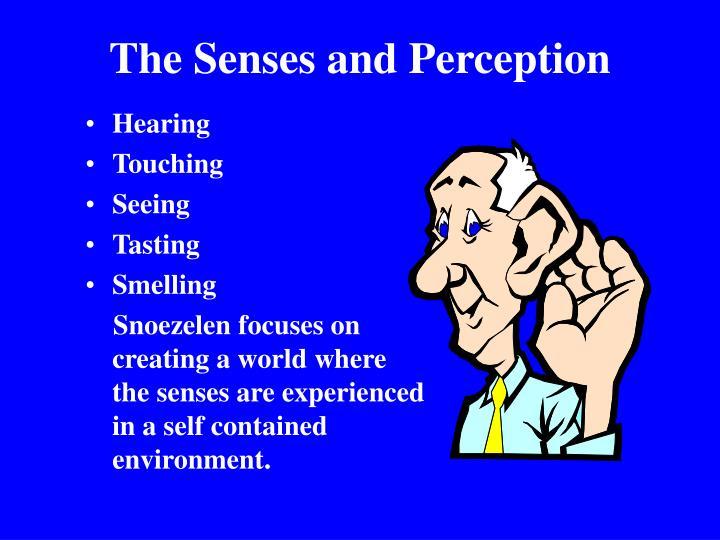 The Senses and Perception