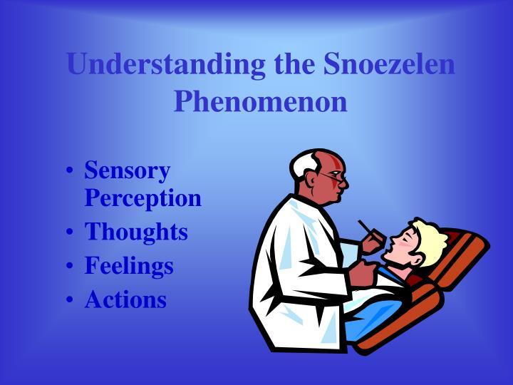 Understanding the Snoezelen Phenomenon