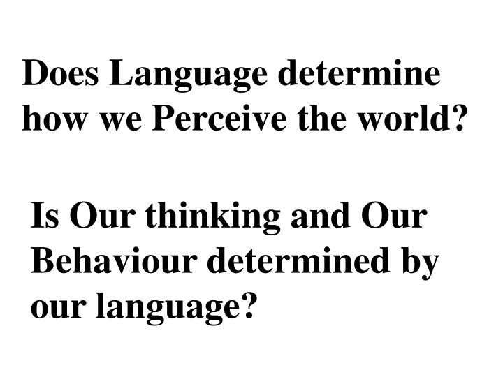 Does Language determine how we Perceive the world?