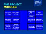 the project modules