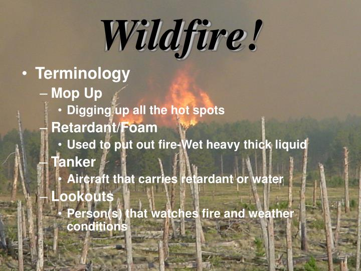 Wildfire!