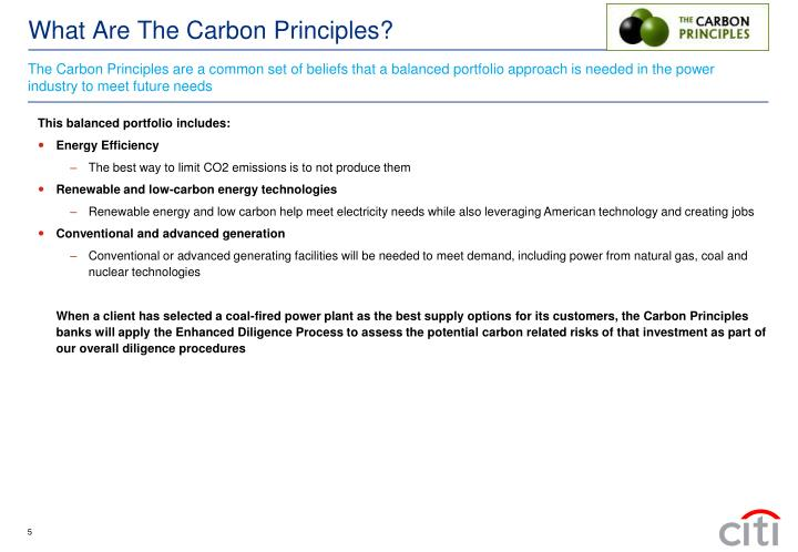 The Carbon Principles are a common set of beliefs that a balanced portfolio approach is needed in the power industry to meet future needs