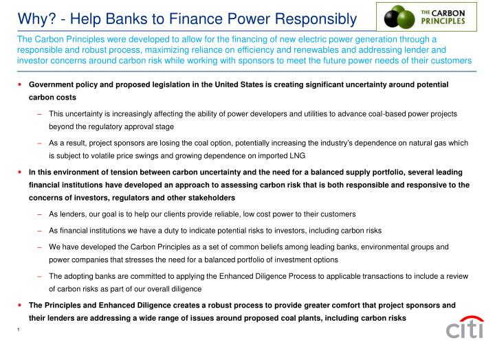 The Carbon Principles were developed to allow for the financing of new electric power generation through a responsible and robust process, maximizing reliance on efficiency and renewables and addressing lender and investor concerns around carbon risk while working with sponsors to meet the future power needs of their customers