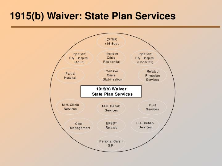 1915(b) Waiver: State Plan Services