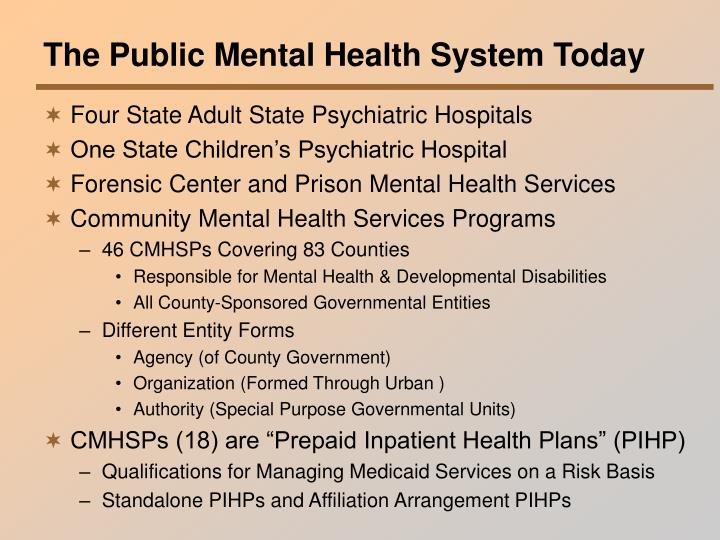 The Public Mental Health System Today