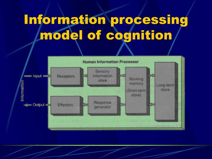 Information processing model of cognition