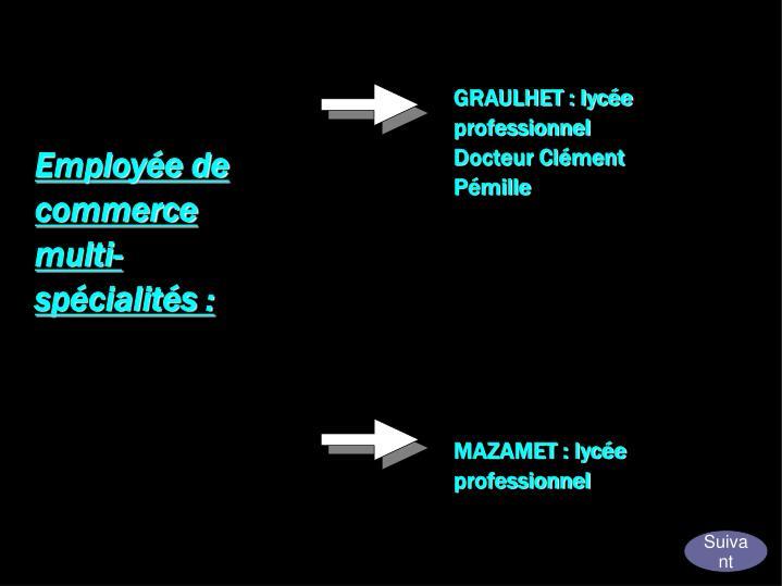 GRAULHET : lycée professionnel Docteur Clément Pémille
