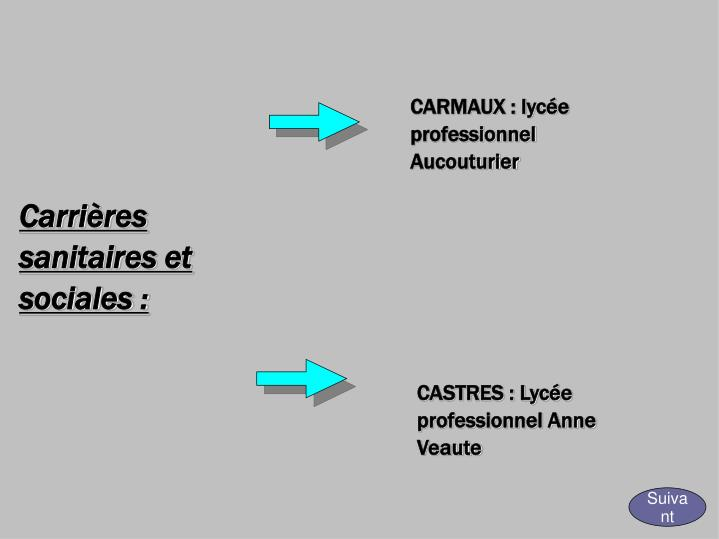 CARMAUX : lycée professionnel Aucouturier