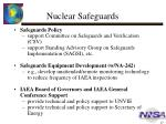nuclear safeguards1