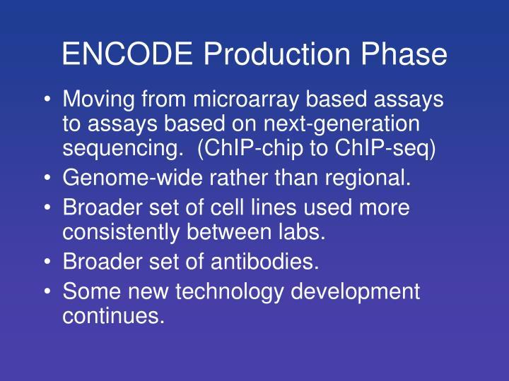 ENCODE Production Phase