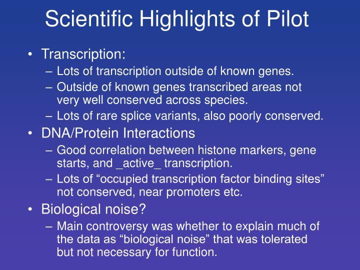 Scientific Highlights of Pilot