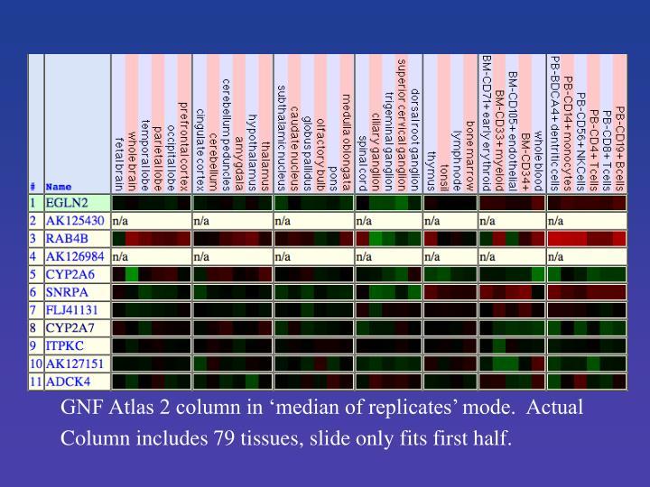 GNF Atlas 2 column in 'median of replicates' mode.  Actual
