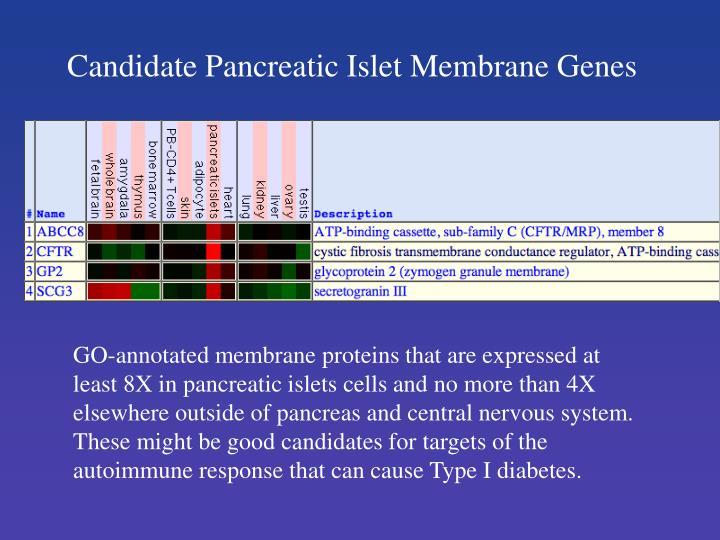Candidate Pancreatic Islet Membrane Genes