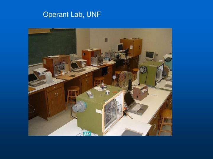 Operant Lab, UNF