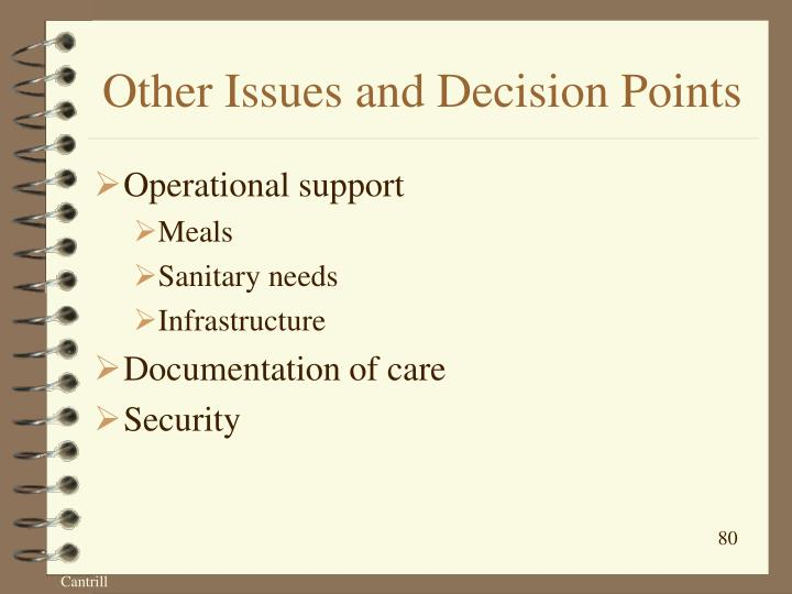 Other Issues and Decision Points