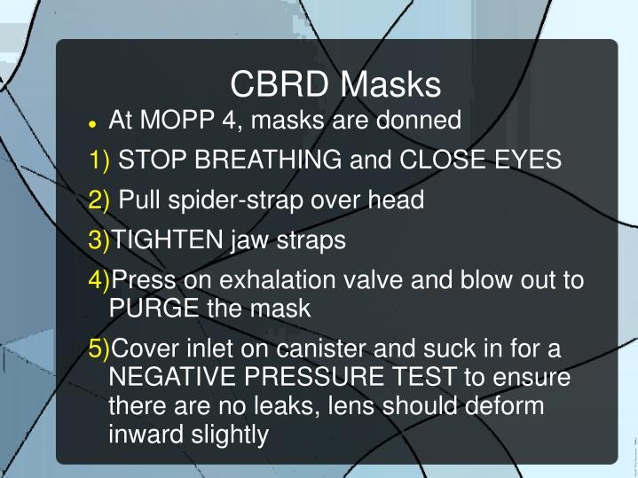 CBRD Masks