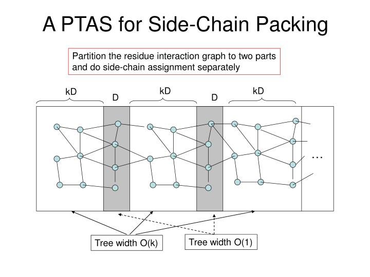 A PTAS for Side-Chain Packing