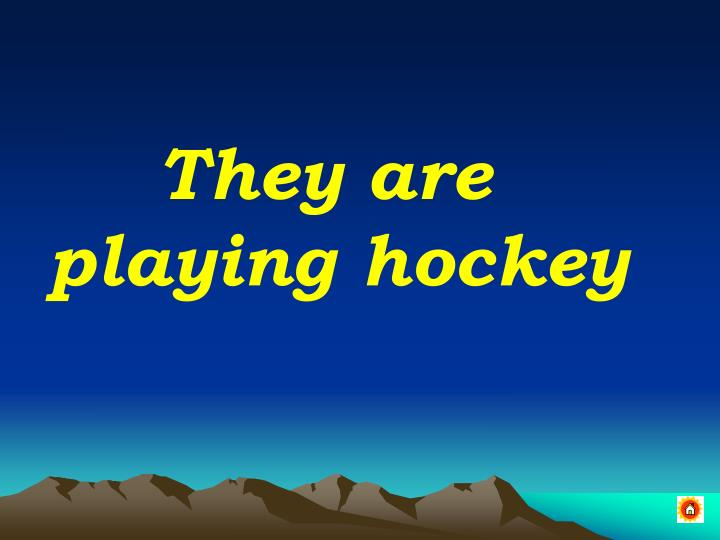 They are playing hockey