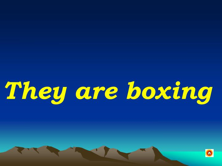 They are boxing