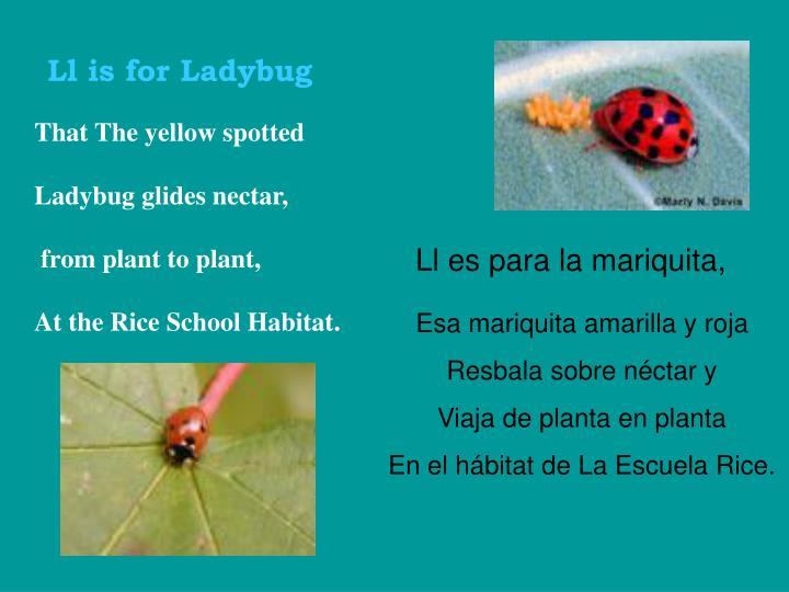 Ll is for Ladybug