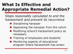 what is effective and appropriate remedial action