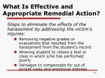 what is effective and appropriate remedial action1