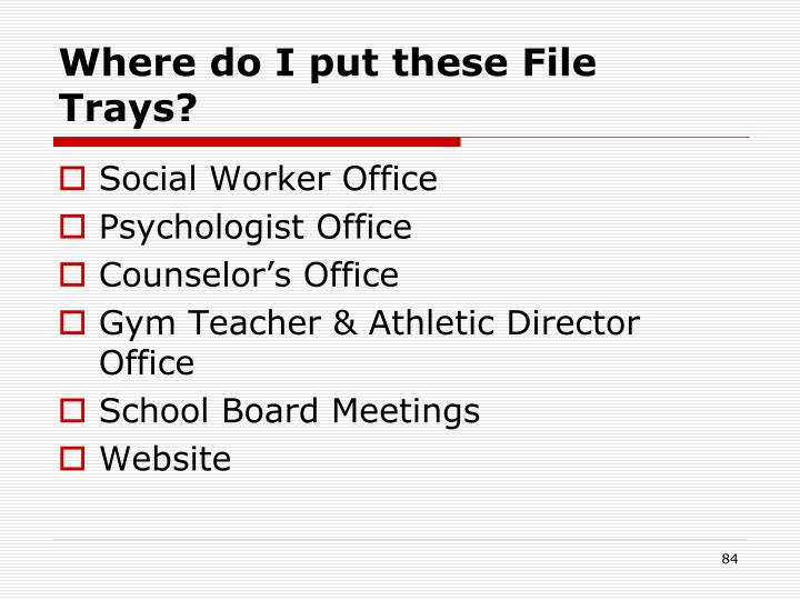Where do I put these File Trays?