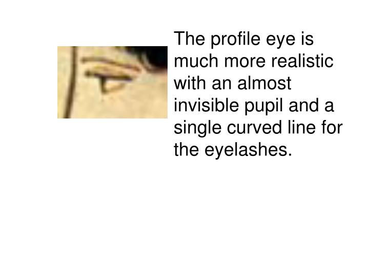 The profile eye is much more realistic with an almost invisible pupil and a single curved line for the eyelashes.