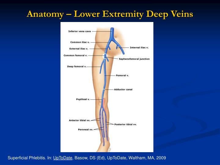accp guidelines below knee dvt