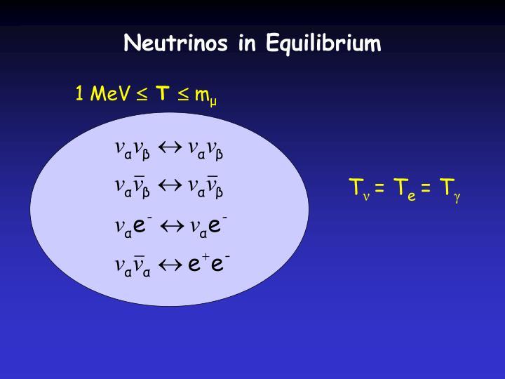 Neutrinos in Equilibrium