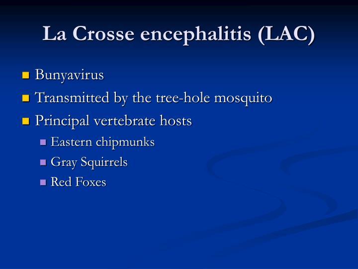 La Crosse encephalitis (LAC)