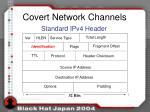 covert network channels1
