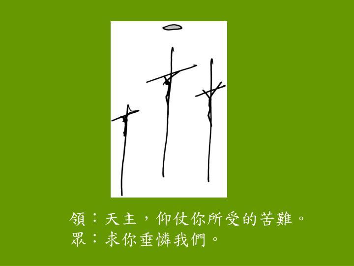 領:天主,仰仗你所受的苦難。