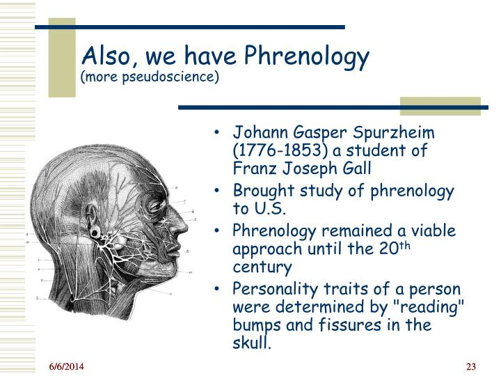 a discussion about the phrenology and personality traits