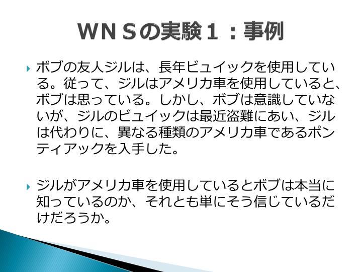 WNSの実験1:事例