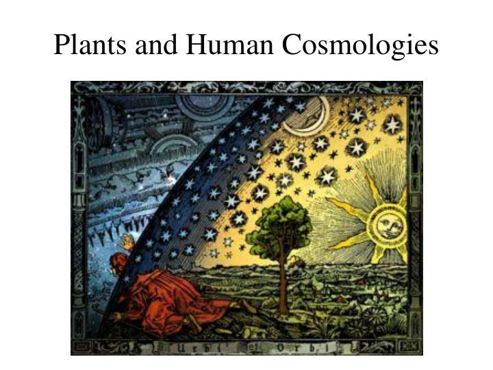 Plants and Human Cosmologies