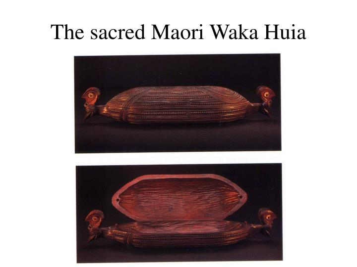 The sacred Maori Waka Huia