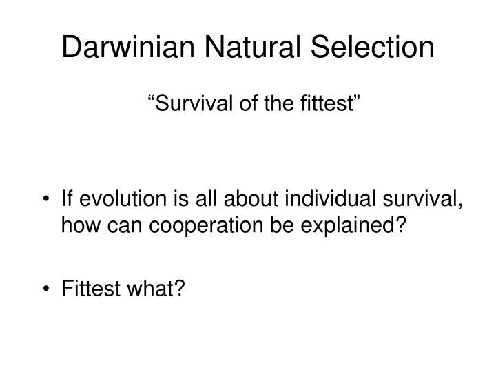 Darwinian Natural Selection