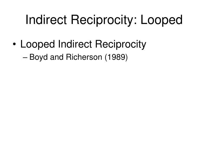 Indirect Reciprocity: Looped