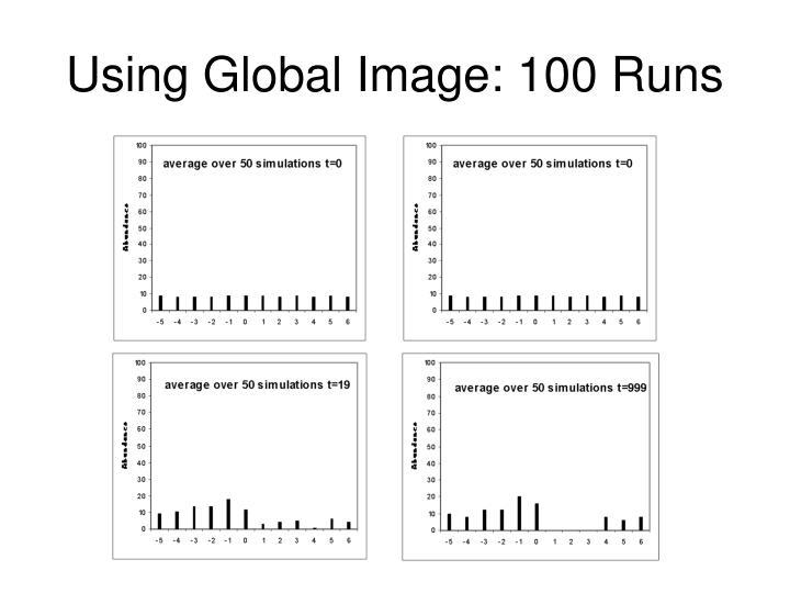 Using Global Image: 100 Runs