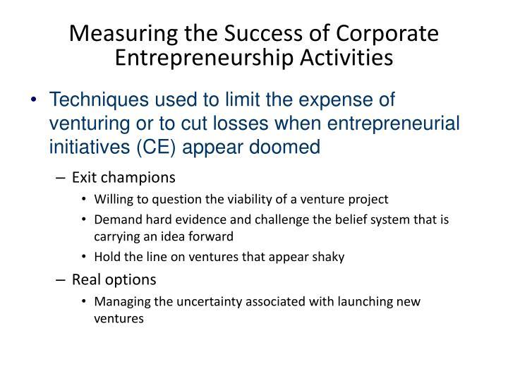 Measuring the Success of Corporate Entrepreneurship Activities