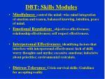 dbt skills modules
