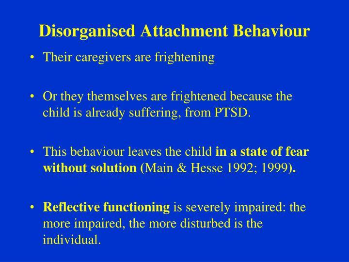 Disorganised Attachment Behaviour