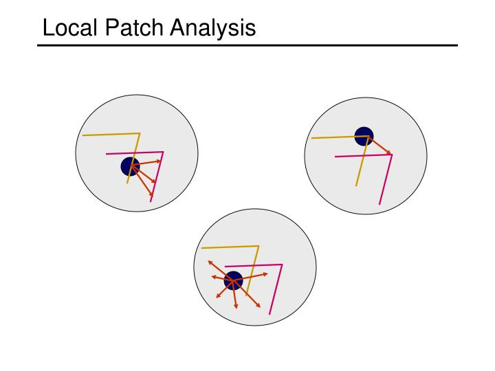 Local Patch Analysis
