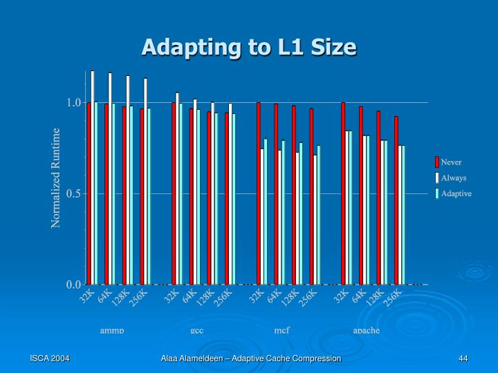 Adapting to L1 Size