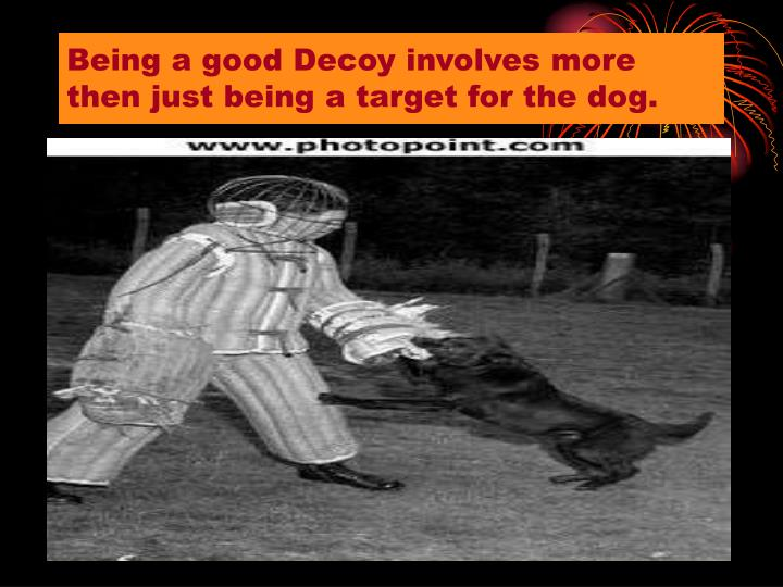 Being a good Decoy involves more then just being a target for the dog.