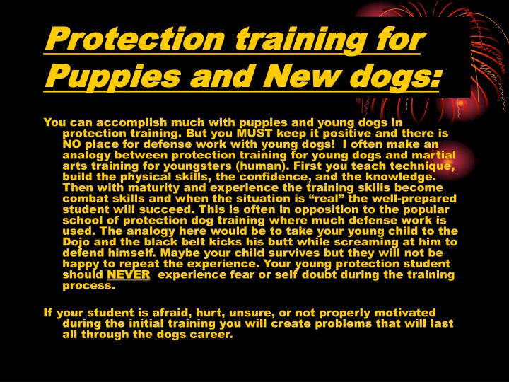 Protection training for Puppies and New dogs: